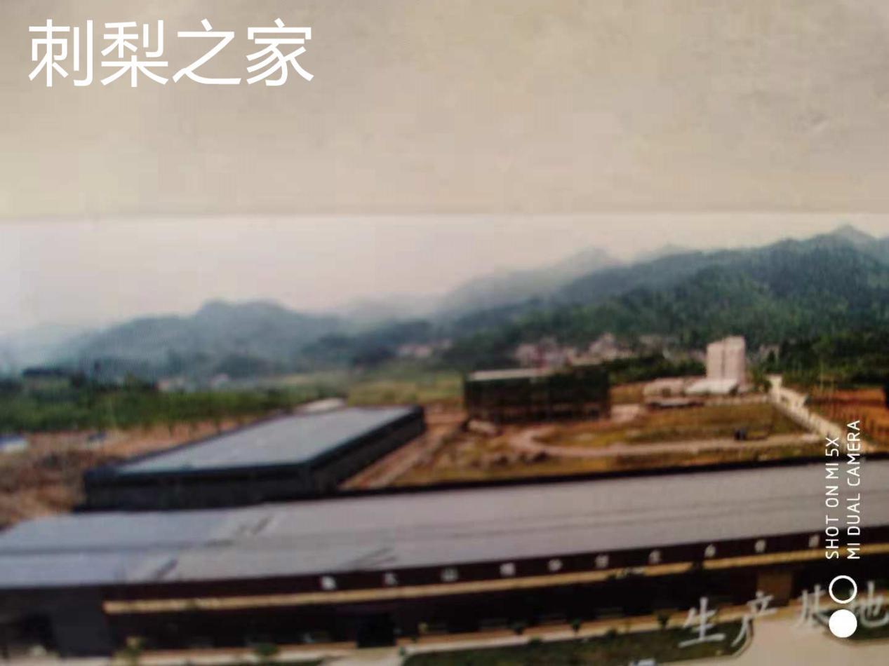 贵州刺梨产业园