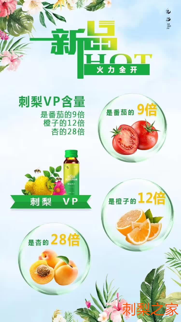 刺梨果怎么烘干?出生于云贵高原的VC王鲜刺梨果的烘干储藏方法