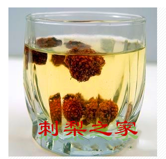 刺梨茶有何妙用?大部分人不清楚的它的养生功效!