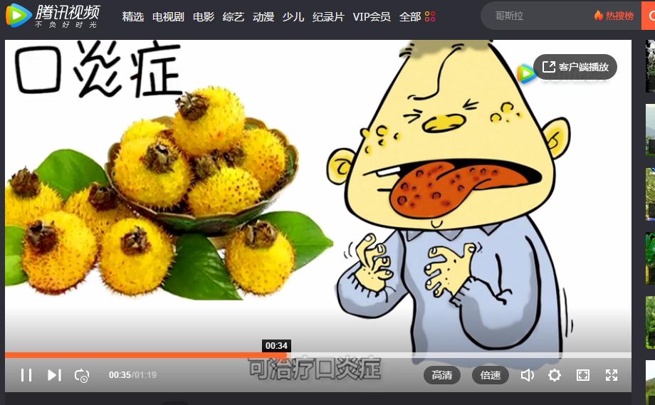 这种水果你一定没吃过!山野特供!营养丰富、口腔溃疡的克星!